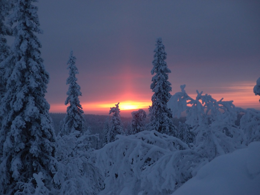 Finland Winter Night